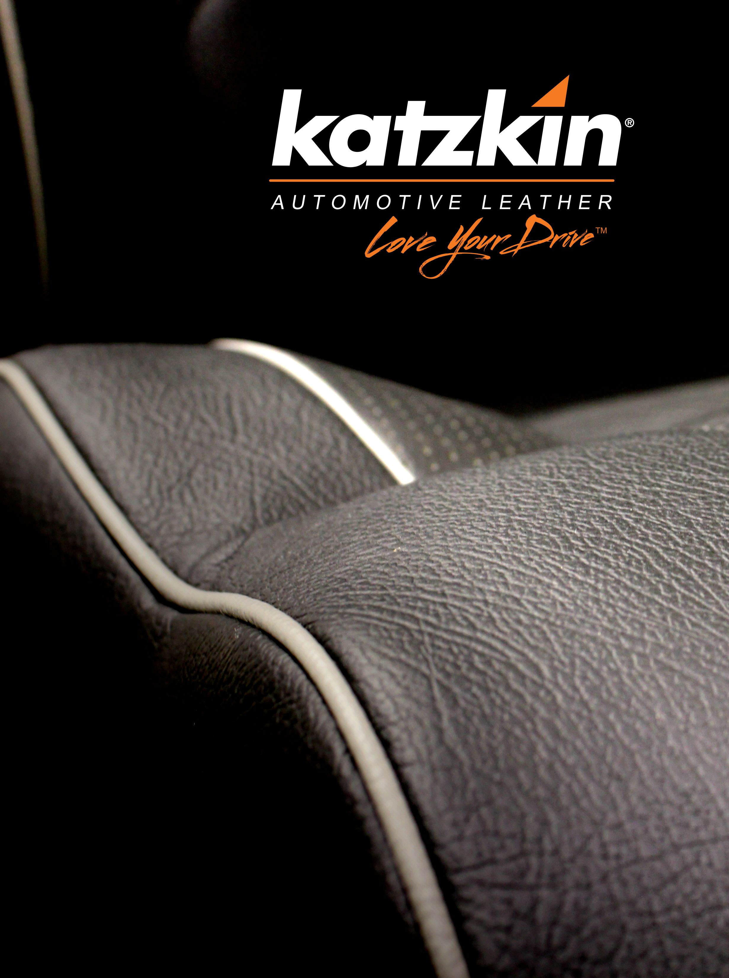 download 2017 Katzkin Swatch Card